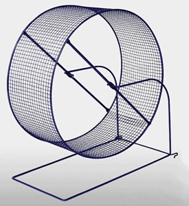A wire mesh exercise wheel