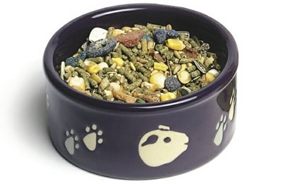 A ceramic guinea pig food bowl